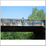 Blue Beach Fossil Museum and Research Center